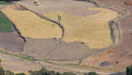 rift: agricultural area in Ethiopia. rift valley Stock Photo