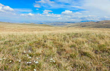 The alpine steppe in the mountains of central Asia. Altai