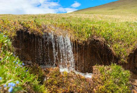 alpine tundra: Spring Creek to Alpine tundra on a Sunny day