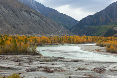 Autumn river in the Altai mountains
