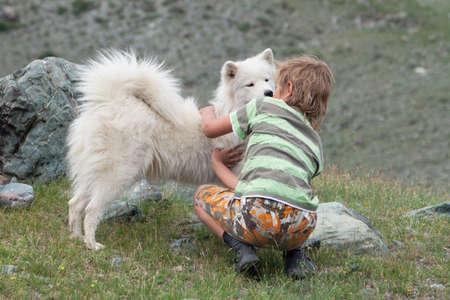 A boy plays with a dog breed husky Standard-Bild
