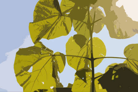 dazzled: Posterized abstract of large leaves against a sunny blue sky