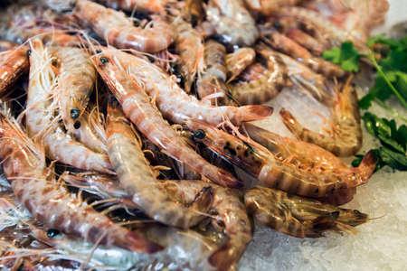 mackerel: Prawns, fresh, chilled on a shelf of the market Stock Photo