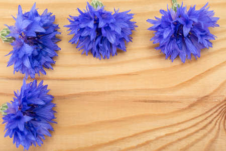 centaurea: Blue Centaurea flowers on wooden table
