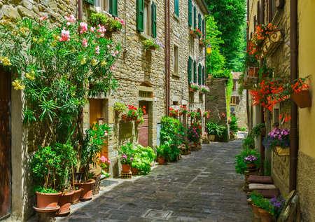 puertas antiguas: Calle italiana típica en una pequeña ciudad de provincia de la Toscana, Italia, Europa