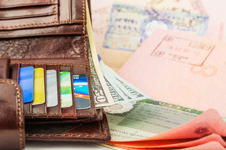 customs official: Disclosed passport with visa