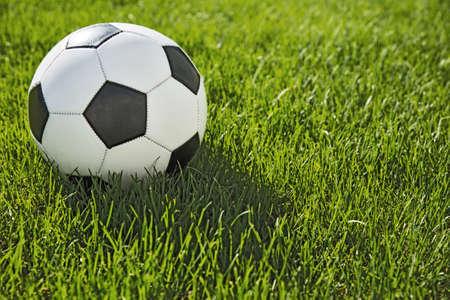 soccer: soccer ball on soccer field