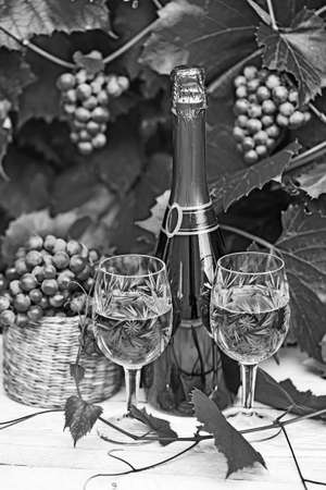 tartaric: The composition of tartaric paraphernalia, on the topic the wine. Old-style, black - white photo. Stock Photo