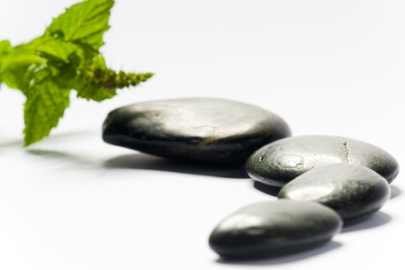 black spa stones with green leaf on white ground
