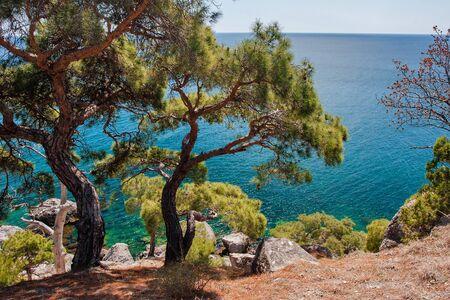 Crimean coast of the Black sea near the city of Sudak and the village of Novy Svet. Banque d'images