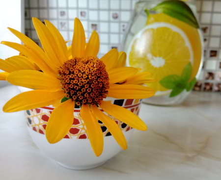 Yellow daisy on the table next to the jug Banco de Imagens