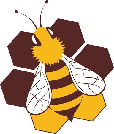 Beeswax Macro of working bee on honeycells Stock Vector - 16752241