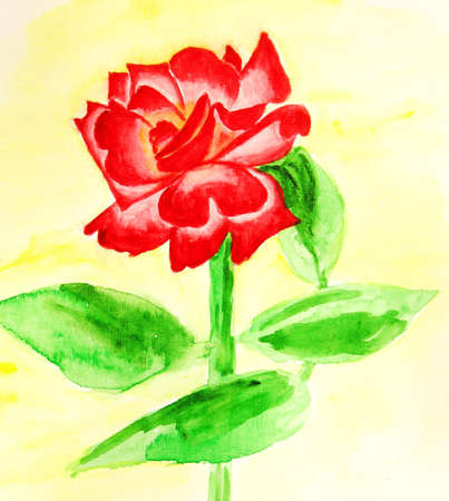 Hand drawn picture, watercolour - red rose on light yellow background. photo