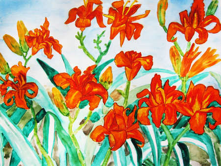 Orange daily lilies, hand drawn painting, water colours. photo