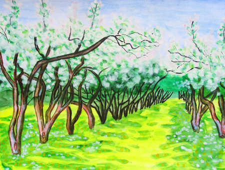 Hand drawn watercolour painting, spring landscape - apple garden in blossom. photo