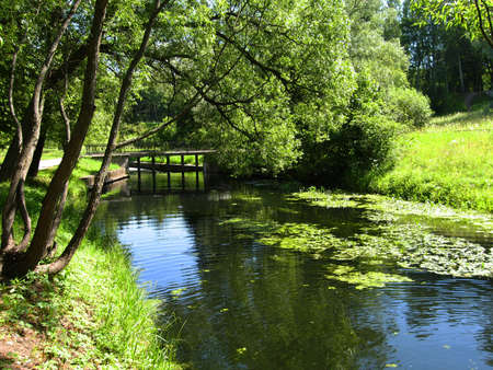 Summer landscape with river and bridge. Recorded in park in Pavlovsk, surroundings of St. Petersburg, Russia. photo