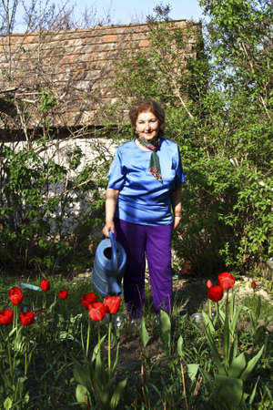 Woman with watering can in the garden near flowerbed with red tulips, village house behind. Stock Photo - 12239378