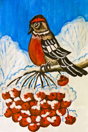 ash tree: Hand painted picture, gouache - bullfinch bird sitting on branch of ash tree with berries