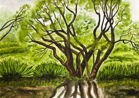 Hand painted, picture, watercolours - summer landscape with tree  photo