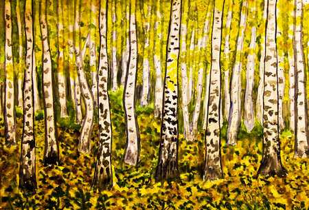 Hand painted picture, watercolours, landscape - yellow birch forest in autumn.