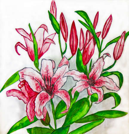 Hand painted picture, watercolours - two pink lilies on white background. photo