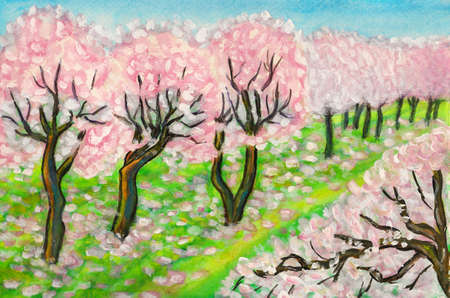 Hand painted picture, watercolours, spring garden with pink cherry trees in blossom  photo
