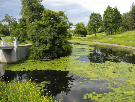 Summer landscape with river, recorded in park in Pavlovsk, surroundings of St. Petersburg, Russia. photo