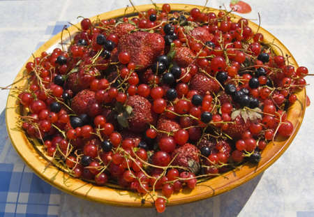 bilberry: Plate with strawberry, bilberry  shortleberry  and redcurrant
