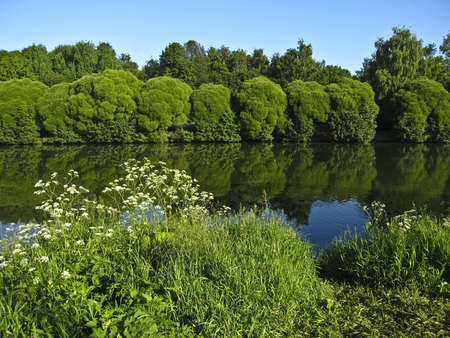 Summer landscape with lake, trees around, reflection in water. Recorded in Izmaylovskiy park in Moscow. Stock Photo - 13144003