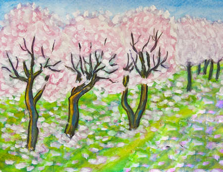 Hand painted illustration - spring landscape pink cherry garden in blossom. illustration