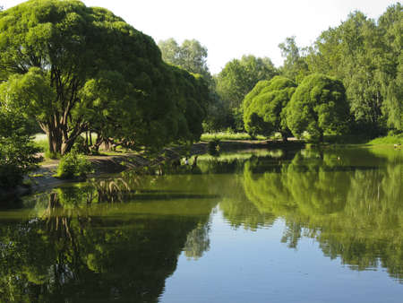 Summer water landscape - lake in park, trees around, reflection of trees in water. Stock Photo - 13991414