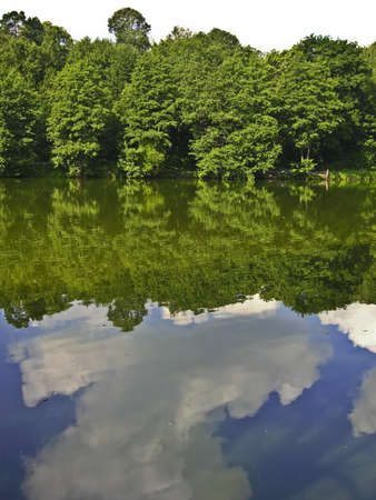 Summer water landscape - trees on bank of lake, reflection of trees and clouds in water, vertical view. Stock Photo - 14126547