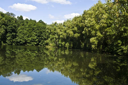 izmaylovskiy: Summer landscape with lake and forest on banks. Recorded in Izmaylovskiy park in Moscow.