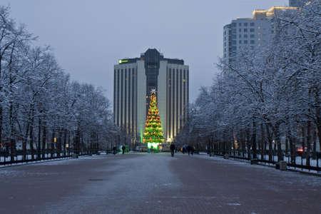 Moscow, Russia - January 02, 2012: Christmas tree on alley near park Sokolniki. Stock Photo - 14881775
