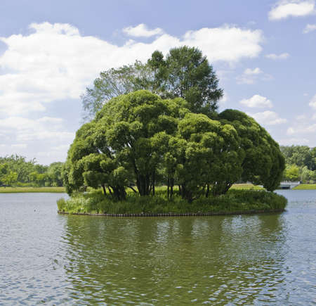 tsaritsino: Summer landscape - little island with trees in the middle of the lake. Recorded in Tsaritsino park in Moscow.
