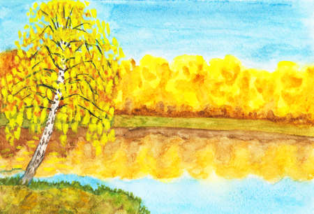 Hand painted picture, watercolours, autumn landscape - golden birch near lake with golden forest  photo