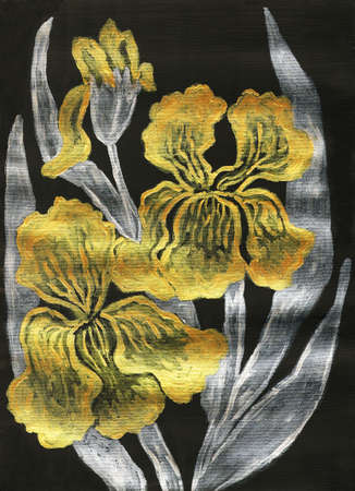 Golden irises with silver leaves on black background, hand painted picture, golden and silver gouache. photo