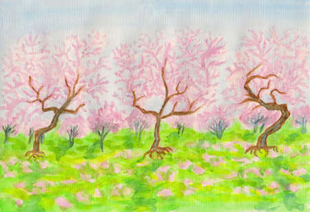 Garden in blossom in spring with pink cherries, hand painted picture, watercolours. photo