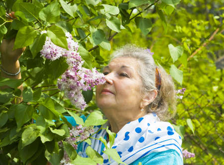 Portrait of old lady, head only in garden with lilac shrub in blossom. Stock Photo - 17527230