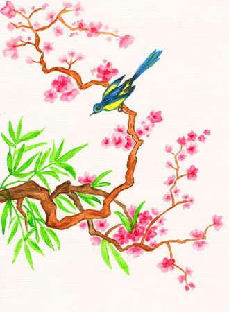 P�jaro en rama con flores de color rosa, cuadro pintado a mano, acuarelas, en las tradiciones de la pintura china antigua. Foto de archivo - 17789523