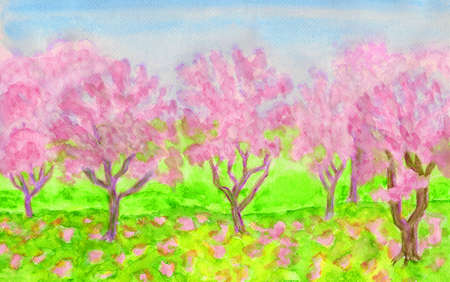 garden with trees in blossom of pink colour photo