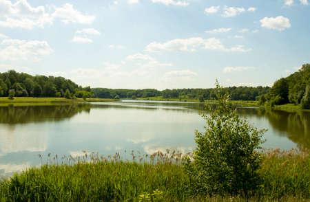 izmaylovskiy: Summer landscape - big lake and forest around, recorded on Swan lake in Izmaylovskiy park in Moscow