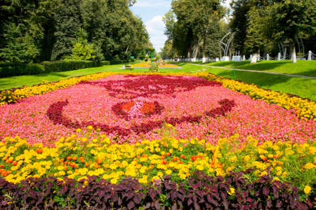 Big flower bed with coleus, begonia and marigolds. Recorded on Exhibition of flower beds in park Kuzminki in Moscow. photo