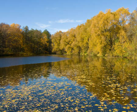 izmaylovskiy: Autumn landscape - lake and yellow forest on banks, recorded on Decorative lakes in Izmaylovskiy park in Moscow.