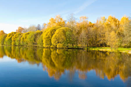 izmaylovskiy: Autumn landscape with lake and willow trees on banks, recorded on Decorative ponds in Izmaylovskiy park, Moscow.