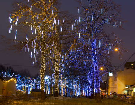 MOSCOW - DECEMBER 30, 2013  trees on Pushkinskaya square illuminated for Christmas and New Year holidays