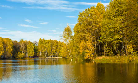 izmaylovskiy: Autumn landscape with lake and yellow birch forest on banks, recorded on Red lake in Izmaylovskiy park in Moscow.