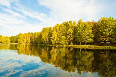 izmaylovskiy: Autumn landscape - big lake with yellow forest on bank with reflection, recorded on Red lake in Izmaylovskiy park in Moscow.