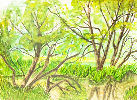 river bank: Hand painted picture, watercolours, summer landscape with trees on river bank. Stock Photo