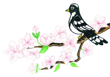 Hand painted picture, watercolours, bird on branch with white flowers, in traditions of old Chinese painting.